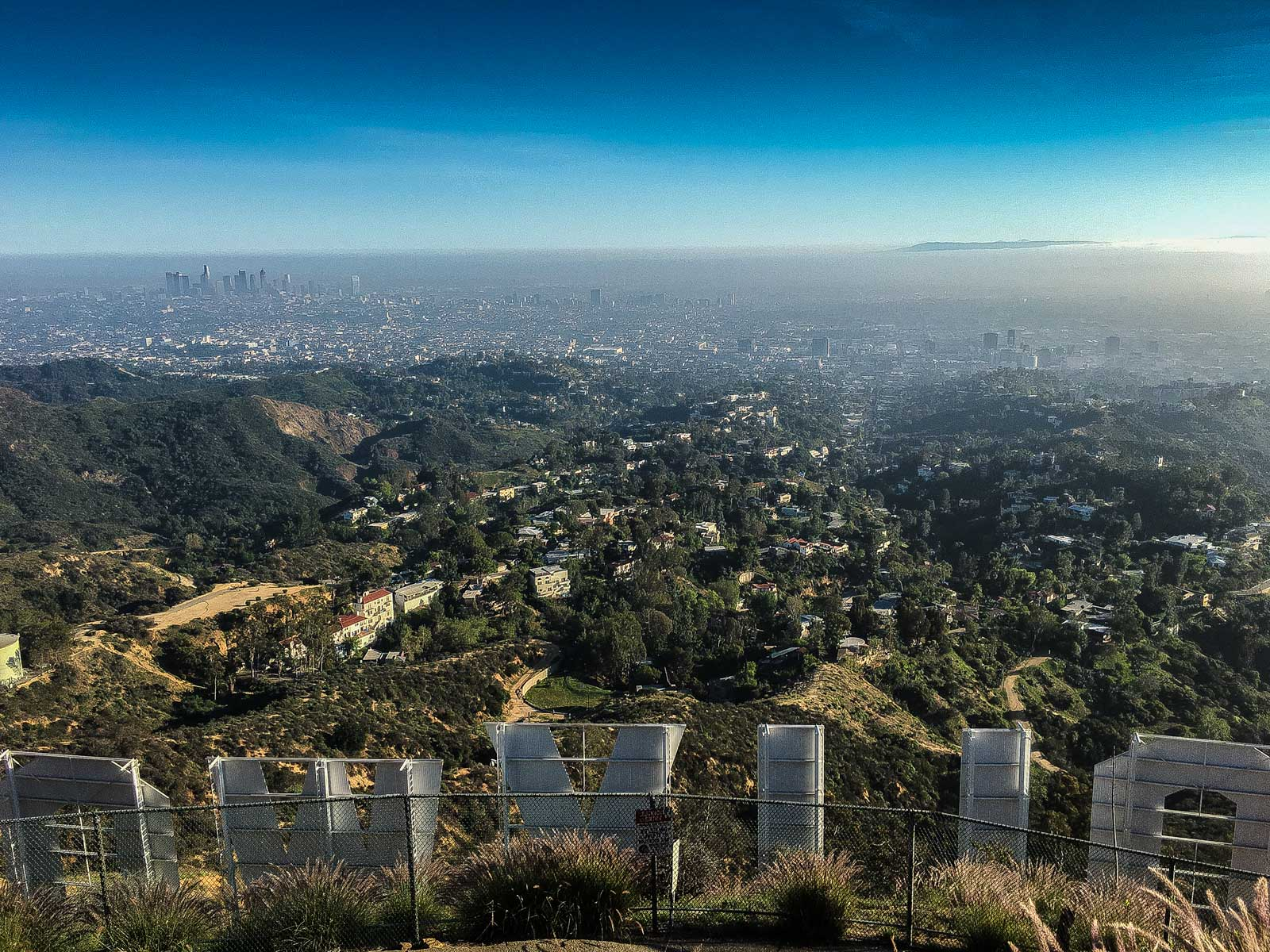 Behind the Hollywood sign