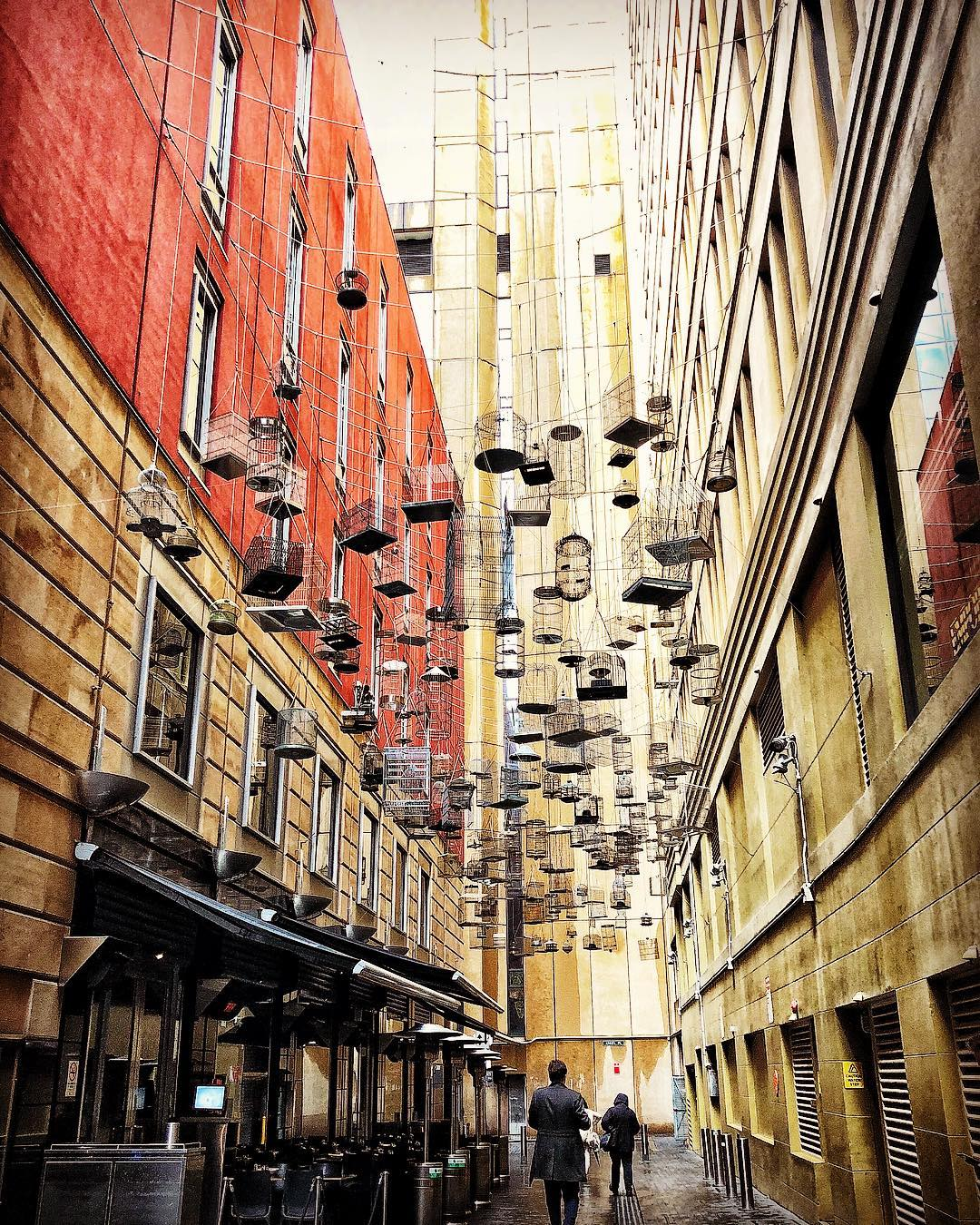 Sydney's Hidden Gems Angel Place Sydney