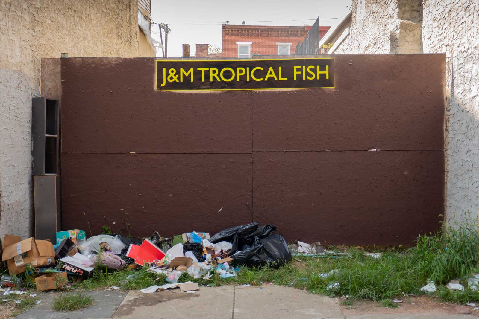 J & M Tropical Fish Pet Store from Rocky Philadelphia