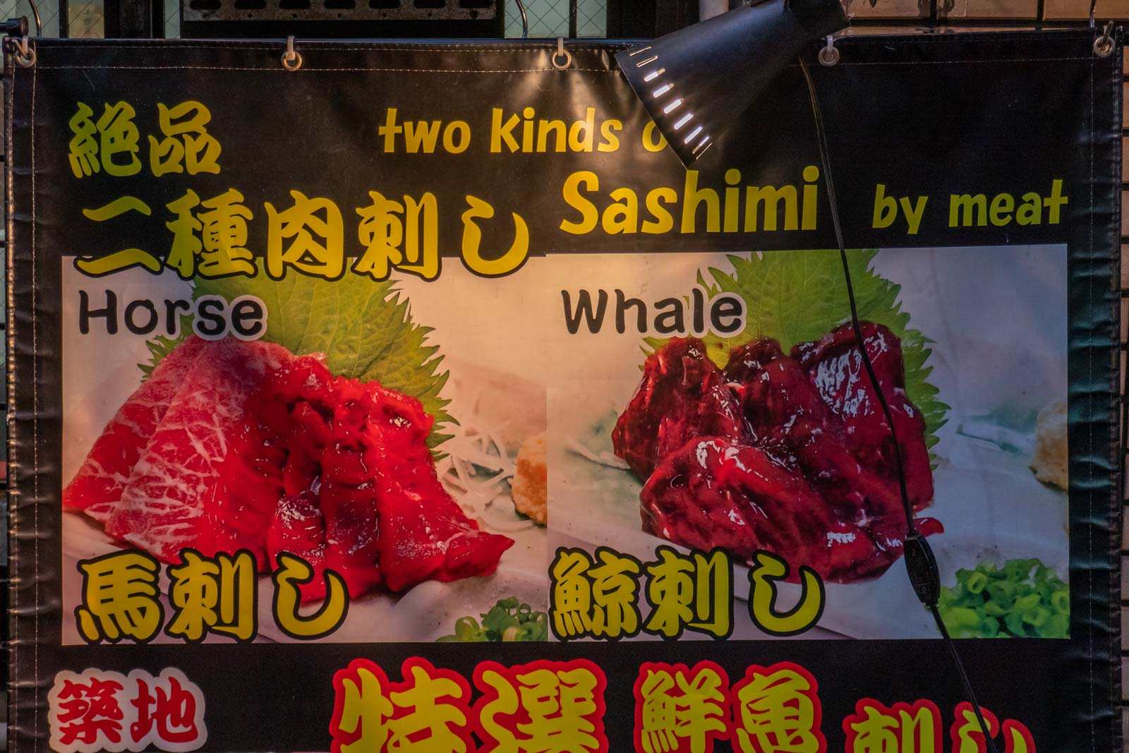 horse and whale sashimi in Tokyo Japan