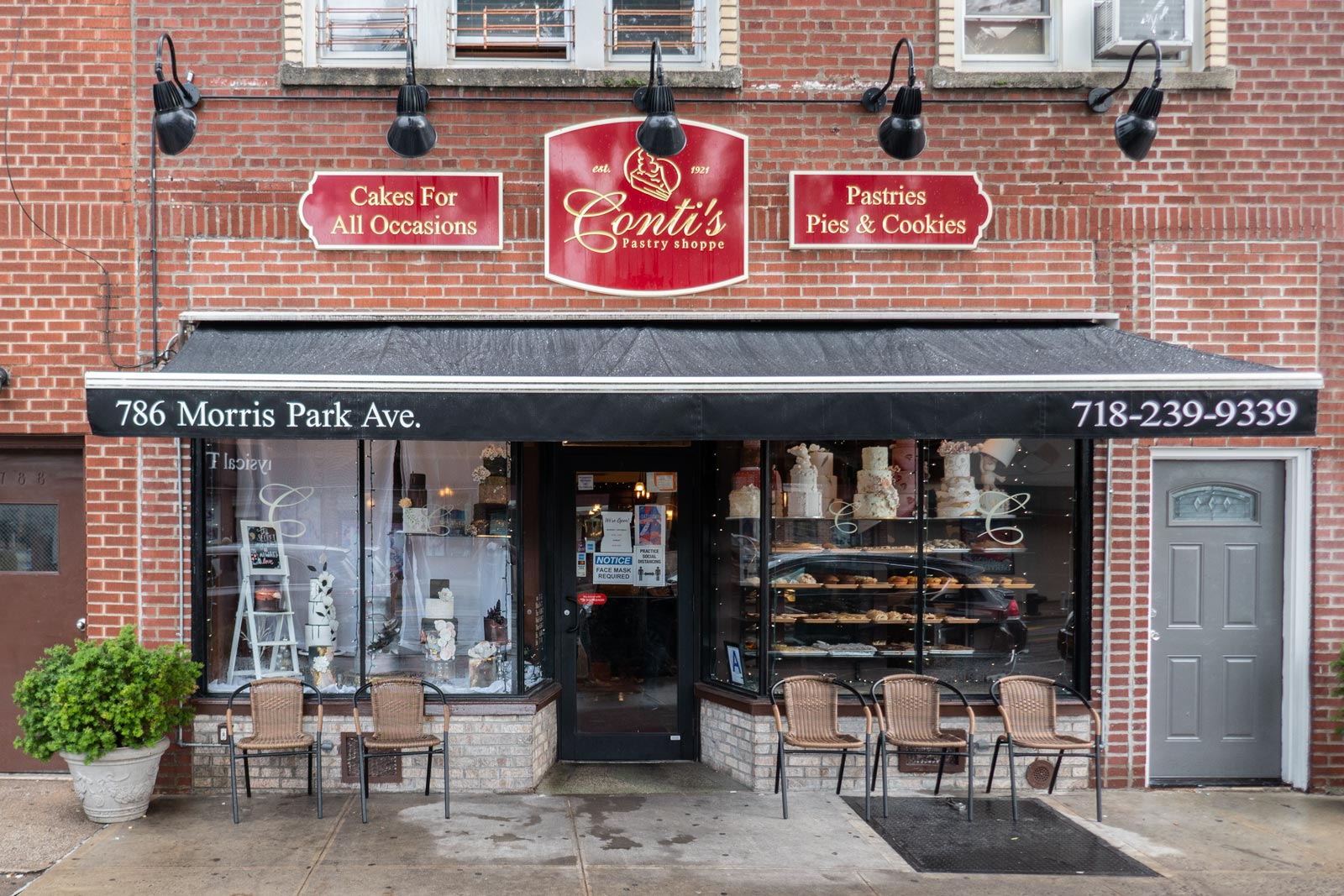 Conti's Pastry Shoppe Bronx NYC